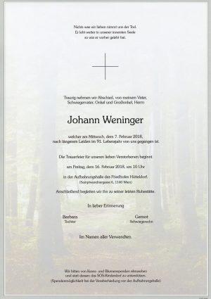 Portrait von Herr Johann WENINGER