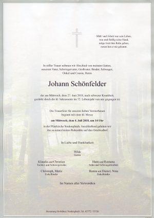 Portrait von Neulengbach Herr Johann Schönfelder