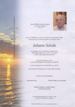 Portrait von Neulengbach – Herr Johann Scholz