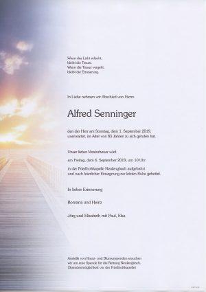 Portrait von Neulengbach – Herr Alfred Senninger