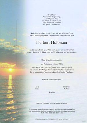 Portrait von Pressbaum – Herr Herbert Hofbauer