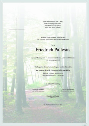 Portrait von Wien – Herr Friedrich Pallesits
