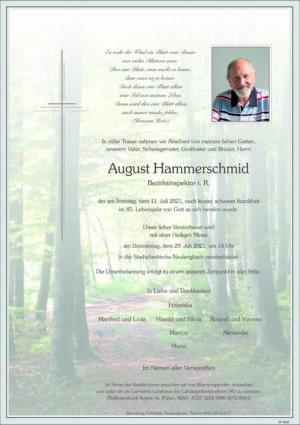 Portrait von Neulengbach – Herr August Hammerschmid