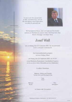 Portrait von Neulengbach – Herr Josef Wall